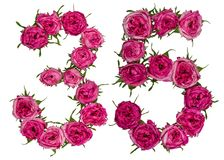 Arabic numeral 35, thirty five, from red flowers of rose, isolat Stock Image