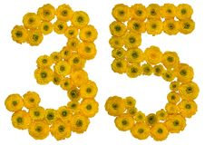Arabic numeral 35, thirty five, from yellow flowers of buttercup Royalty Free Stock Image