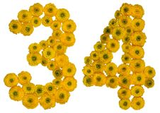Arabic numeral 34, thirty four, from yellow flowers of buttercup Stock Photography