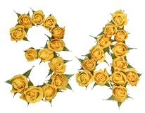 Arabic numeral 34, thirty four, from yellow flowers of rose, iso. Lated on white background stock images