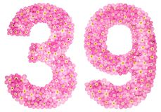Arabic numeral 39, thirty nine, from pink forget-me-not flowers,. Isolated on white background Royalty Free Stock Photos