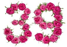 Arabic numeral 39, thirty nine, from red flowers of rose, isolat Stock Photography