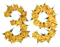 Arabic numeral 39, thirty nine, from yellow flowers of rose, iso. Lated on white background stock photo