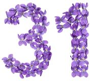 Arabic numeral 31, thirty one, from flowers of viola, isolated o. N white background Royalty Free Stock Image