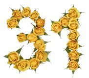 Arabic numeral 31, thirty one, from yellow flowers of rose, isolated on white background.  stock images