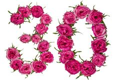 Arabic numeral 30, thirty, from red flowers of rose, isolated on. White background royalty free stock photos