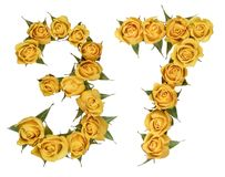 Arabic numeral 37, thirty seven, from yellow flowers of rose, is. Olated on white background royalty free stock image