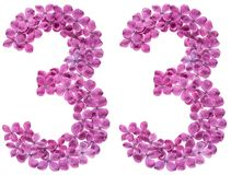 Arabic numeral 33, thirty three, from flowers of lilac, isolated. On white background royalty free stock photography