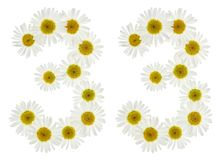Arabic numeral 33, thirty three, from white flowers of chamomile Royalty Free Stock Photos
