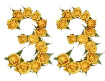 Arabic numeral 33, thirty three, from yellow flowers of rose, is. Olated on white background royalty free stock photos