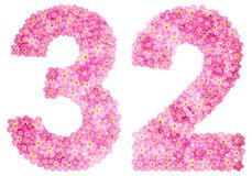 Arabic numeral 32, thirty two, from pink forget-me-not flowers,. Isolated on white background Stock Photography