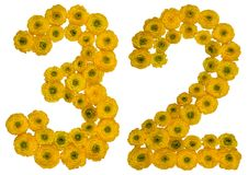 Arabic numeral 32, thirty two, from yellow flowers of buttercup, Royalty Free Stock Image