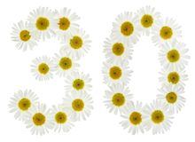 Arabic numeral 30, thirty, from white flowers of chamomile, isol Stock Image