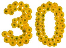 Arabic numeral 30, thirty, from yellow flowers of buttercup, iso royalty free stock photos