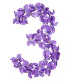 Arabic numeral 3, three, from flowers of viola, isolated on whit. E background Stock Photography