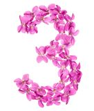 Arabic numeral 3, three, from flowers of viola, isolated on whit. E background Stock Photo