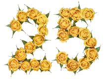 Arabic numeral 25, twenty five, from yellow flowers of rose, iso. Lated on white background stock photography