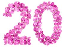 Arabic numeral 20, twenty, from flowers of viola, isolated on wh. Ite background stock images