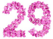 Arabic numeral 29, twenty nine, from flowers of viola, isolated. On white background Stock Photo