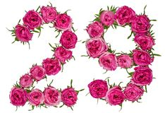 Arabic numeral 29, twenty nine, from red flowers of rose, isolat. Ed on white background Royalty Free Stock Photos