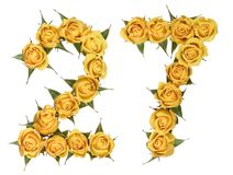 Arabic numeral 27, twenty seven, from yellow flowers of rose, is. Olated on white background stock image