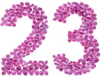 Arabic numeral 23, twenty three, from flowers of lilac, isolated stock images