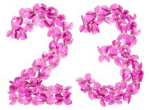 Arabic numeral 23, twenty three, from flowers of viola, isolated. On white background Royalty Free Stock Image