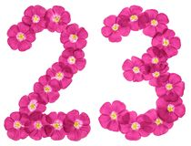 Arabic numeral 23, twenty three, from pink flowers of flax, isolated on white background vector illustration