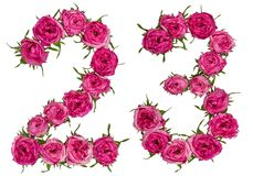 Arabic numeral 23, twenty three, from red flowers of rose, isola. Ted on white background Royalty Free Stock Images