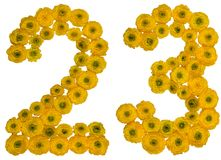 Arabic numeral 23, twenty three, from yellow flowers of buttercu. P, isolated on white background Stock Photo