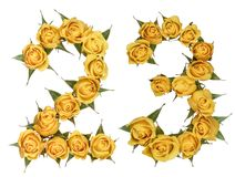Arabic numeral 23, twenty three, from yellow flowers of rose, is. Olated on white background stock photography
