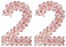 Arabic numeral 22, twenty two, from flowers of hydrangea, isolated on white background stock photos