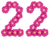 Arabic numeral 22, twenty two, from pink flowers of flax, isolated on white background royalty free stock images