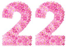 Arabic numeral 22, twenty two, from pink forget-me-not flowers,. Isolated on white background Stock Images