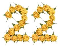 Arabic numeral 22, twenty two, from yellow flowers of rose, isolated on white background.  royalty free stock images