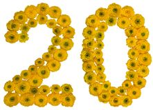 Arabic numeral 20, twenty, from yellow flowers of buttercup, iso Stock Images