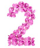 Arabic numeral 2, two, from flowers of viola, isolated on white. Background Stock Photography