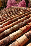 Arabic roof tiles pattern texture in Teruel Spain Royalty Free Stock Photography