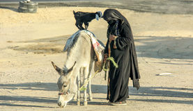 Arabic women with goat and donkey. On the local bus station near Hurghada. This bus station is tourist attraction on the way to Luxor. Photo taken 27.12.2012 Royalty Free Stock Photo