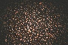 arabica έναρξη ημέρας καφέ φασολιών όπου Στοκ φωτογραφίες με δικαίωμα ελεύθερης χρήσης