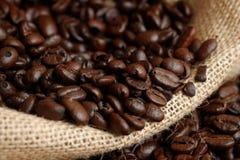 arabica έναρξη ημέρας καφέ φασολιών όπου Στοκ Φωτογραφία