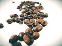 Arabica καφέ φασολιών καφετιά κινηματογράφηση σε πρώτο πλάνο φασολιών αρώματος φρέσκια Στοκ Φωτογραφίες