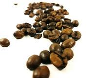 Arabica καφέ φασολιών καφετιά κινηματογράφηση σε πρώτο πλάνο φασολιών αρώματος φρέσκια Στοκ Εικόνες