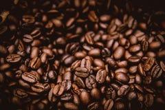 Arabica καφετί τα φασόλια καφέ Στοκ φωτογραφία με δικαίωμα ελεύθερης χρήσης