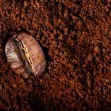 Arabica μακροεντολή φασολιών καφέ καφετή στενό σε έναν επάνω υποβάθρου, μακροεντολή Στοκ Εικόνες