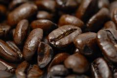 arabica σκοτεινός φρέσκος καφέ  Στοκ Φωτογραφία