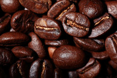 Arabica σύσταση φασολιών καφέ καφετιά Στοκ εικόνα με δικαίωμα ελεύθερης χρήσης