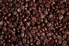 Arabica σύσταση φασολιών καφέ καφετιά Στοκ Φωτογραφία
