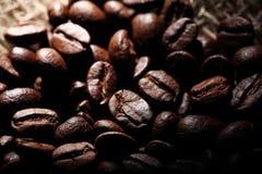 Arabica σύσταση φασολιών καφέ καφετιά Στοκ Φωτογραφίες