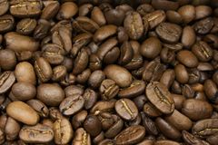 Arabica τα φασόλια καφέ είναι κατάλληλα για το υπόβαθρο και για τη συσκευα στοκ εικόνες